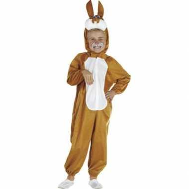 Bruine paashazen kostuumken kids carnaval